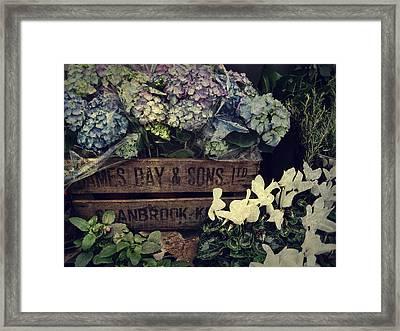 Flower Box Framed Print by JAMART Photography