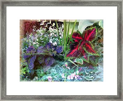 Flower Box Framed Print by John Vandebrooke