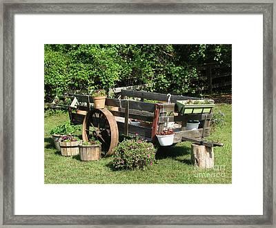 Flower Cart Framed Print
