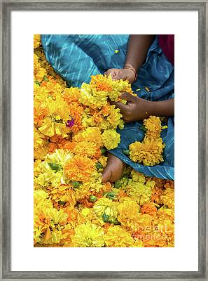 Framed Print featuring the photograph Flower Child by Tim Gainey