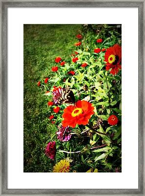 Flower Dance Framed Print by Jill Tennison