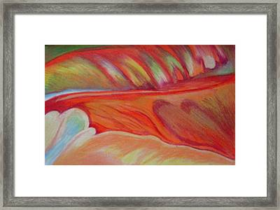 Flower Detail Framed Print