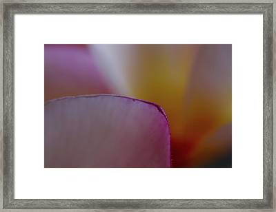 Framed Print featuring the photograph Flower Edges by Roger Mullenhour