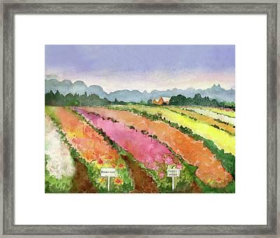 Flower Farm Framed Print by Blenda Studio