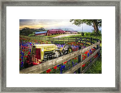 Flower Farm Framed Print by Debra and Dave Vanderlaan
