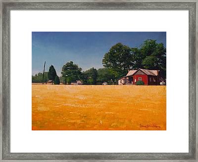 Flower Field 1 Framed Print by Doug Strickland