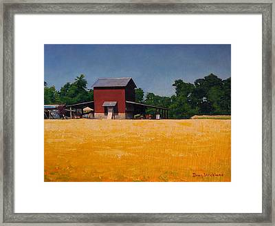 Flower Field 2 Framed Print by Doug Strickland