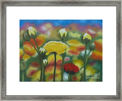 Flower Focus Framed Print