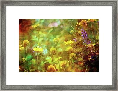 Flower Garden 1310 Idp_2 Framed Print