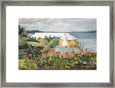 Flower Garden And Bungalow, Bermuda, 1899  Framed Print
