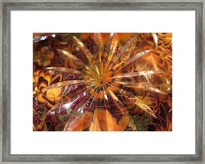 Flower Glass Framed Print by Bonnie See