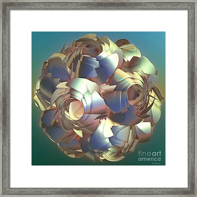 Flower Globe Framed Print by Deborah Benoit