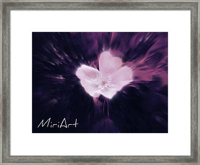 Framed Print featuring the photograph Flower In Purple by Miriam Shaw