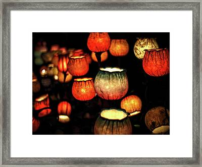 Flower Lamps Framed Print
