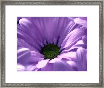 Flower Macro Beauty 4 Framed Print