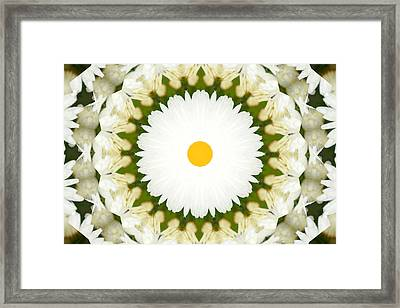 Framed Print featuring the photograph Flower Mandala - A by Anthony Rego