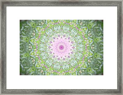 Framed Print featuring the photograph Flower Mandala - B by Anthony Rego