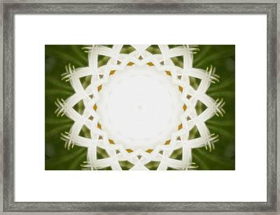 Framed Print featuring the digital art Flower Mandala - C by Anthony Rego