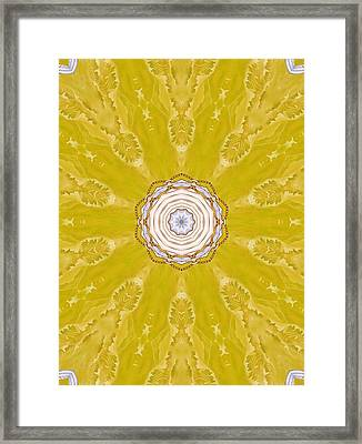 Flower Mandala 3 Framed Print
