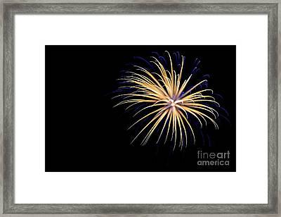 Flower No 3 4926 Framed Print