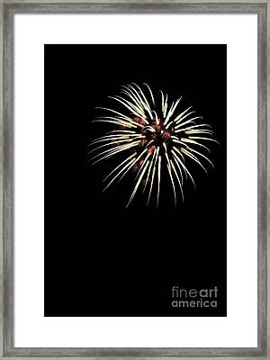 Flower No 7 4978 Framed Print