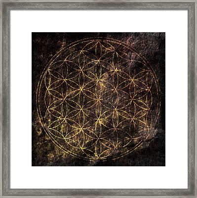 Flower Of Life 2 Framed Print