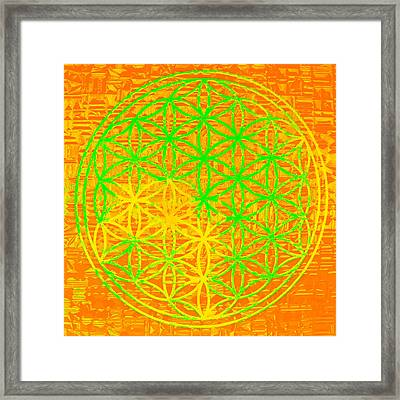 Flower-of-life No. 01 Framed Print by Ramon Labusch