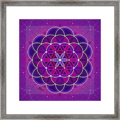 Flower Of Life Framed Print by Soul Structures