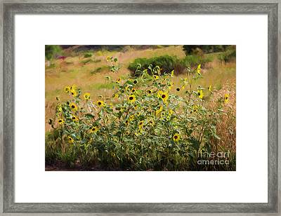 Flower Or Weed? Framed Print by Jon Burch Photography