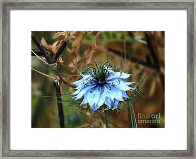 Flower Or Weed Framed Print