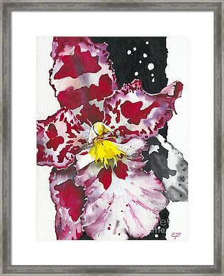 Flower Orchid 11 Elena Yakubovich Framed Print by Elena Yakubovich