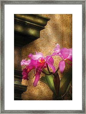 Flower - Orchid - Cattleya  Framed Print