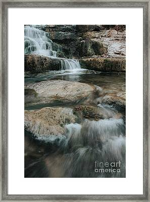 Framed Print featuring the photograph Flower Park by Iris Greenwell
