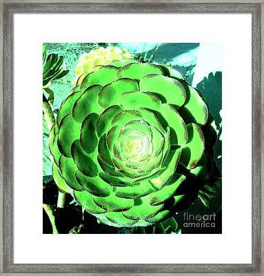 Flower Pattern Of Life Framed Print