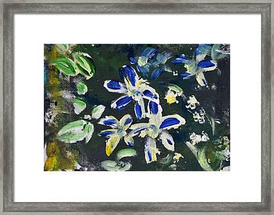 Flower Play Framed Print