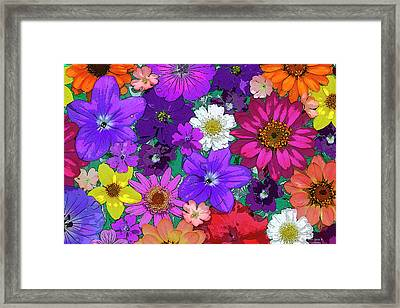 Flower Pond Framed Print by JQ Licensing