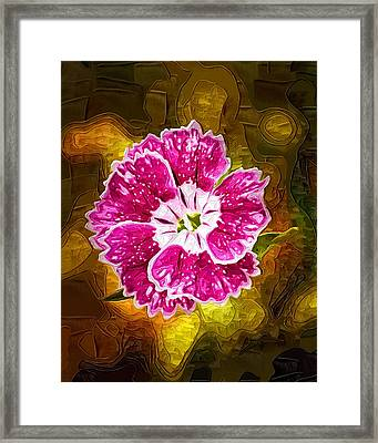 Flower Pop Framed Print by Paul Bartoszek