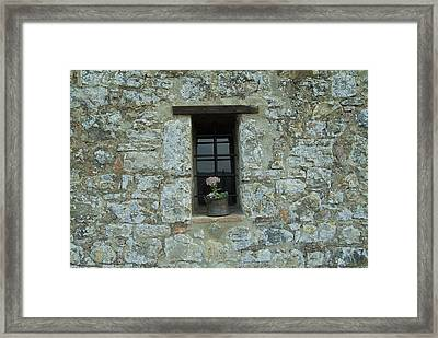 Flower Pot In The Window Of A Tuscan Framed Print by Todd Gipstein