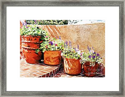 Flower Pot Steps Framed Print by David Lloyd Glover