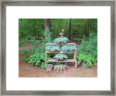 Flower Pots With Plants Framed Print