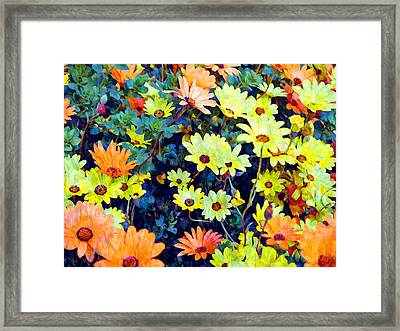 Framed Print featuring the photograph Flower Power by Glenn McCarthy Art and Photography