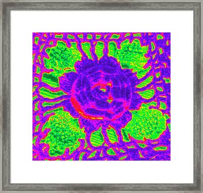 Flower Power Framed Print by Jennifer Coleman
