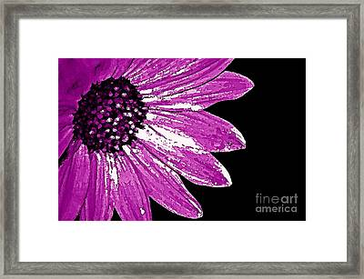 Flower Power  Framed Print by Juls Adams