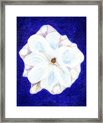 Flower Princess - Www.jennifer-d-art.com Framed Print by Jennifer Skalecke