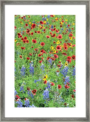 Flower Quilt Framed Print
