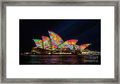 Flower Sails Framed Print by Bryan Freeman