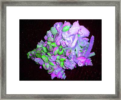 Flower Shell Bouquet Framed Print by Arlin Jules