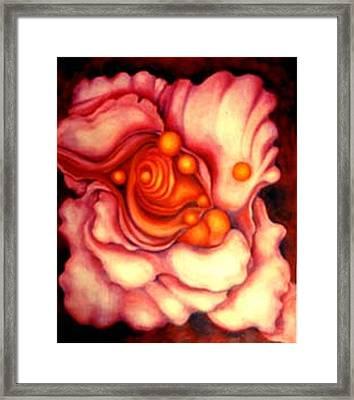 Flower Shell Framed Print