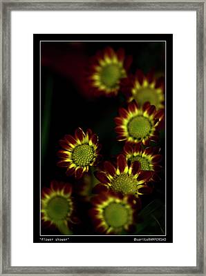 Flower Shower Framed Print by Sarita Rampersad