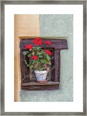 Framed Print featuring the photograph Flower Still Life by Alan Toepfer